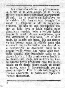 La Raupo Seite 6